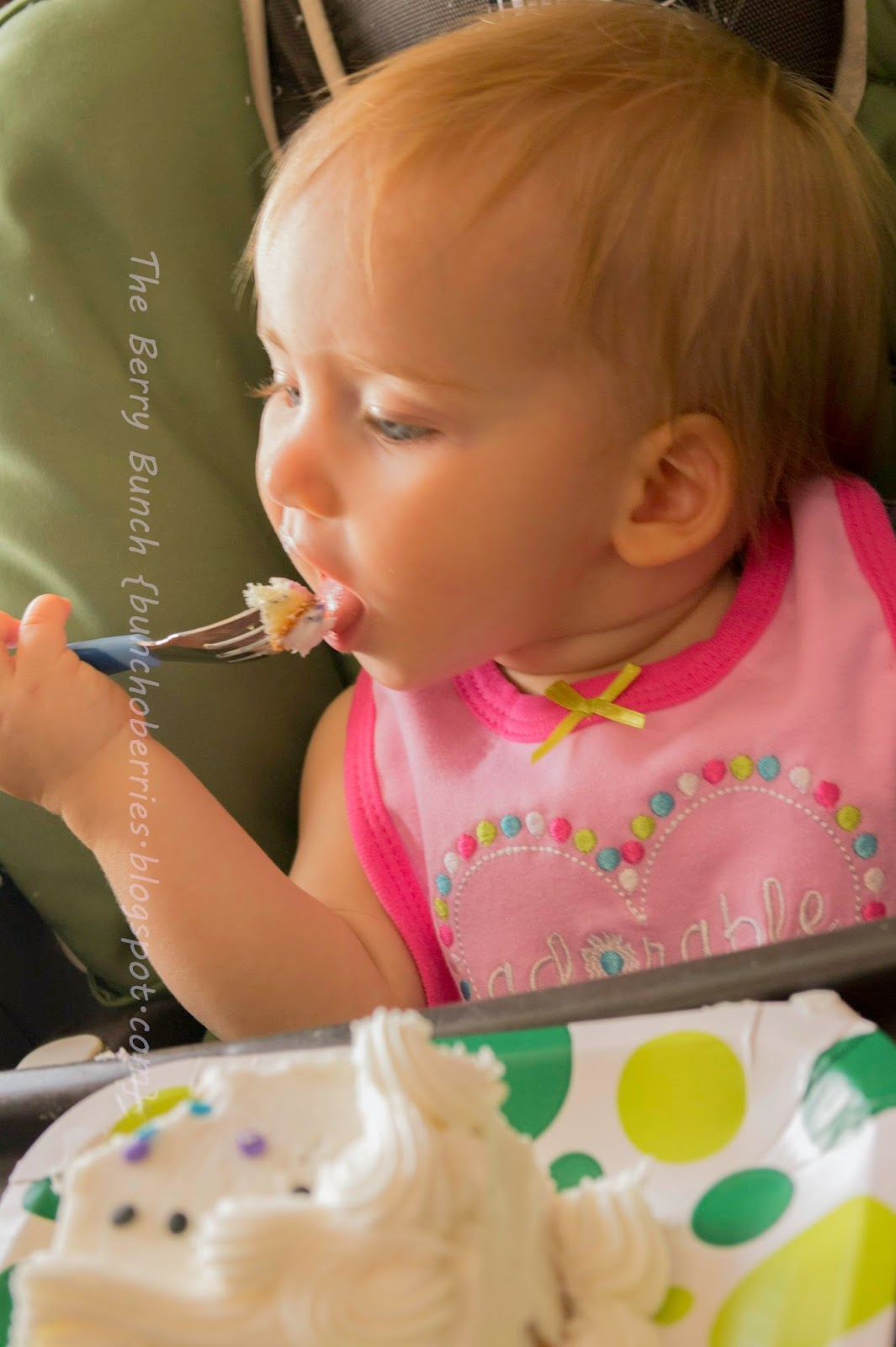 The Berry Bunch: Baby Girl is 1! {Happy Birthday!}