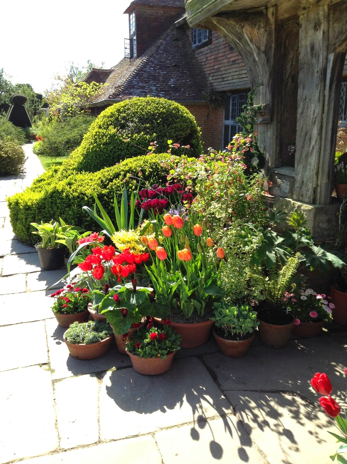Vibrant tulips display in front of Great Dixter House porch - Photo by Noemi Mercurelli
