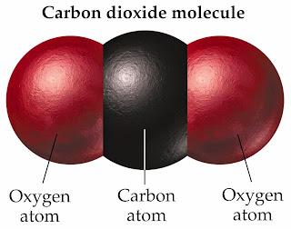 Carbone dioxide  molecule