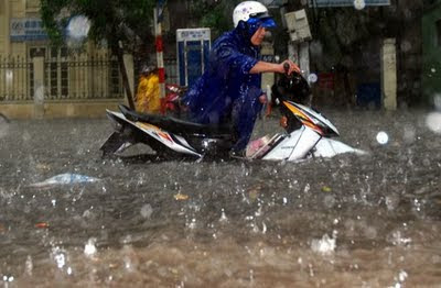 beatles rain ha noi lut