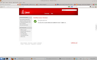Instale o JAVA 7 update 21 no Fedora 18