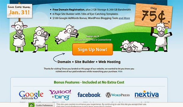 Dominio, hosting y cupón de Facebook Ads por 9 dólares