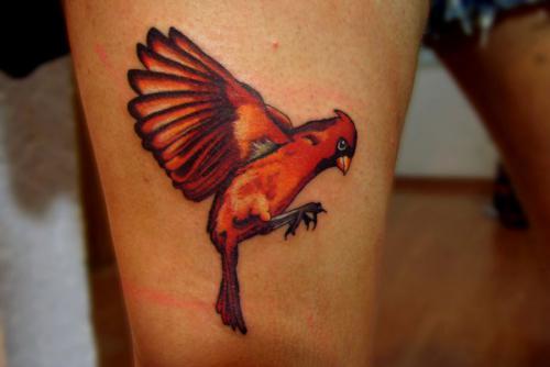 bird tattoo tattoos
