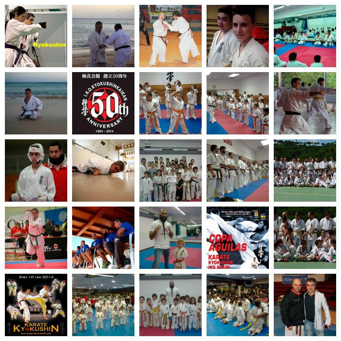 resumen-karate-2014