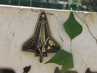עלה עץ האלמוגן מזכיר בצורתו את מעבורת החלל