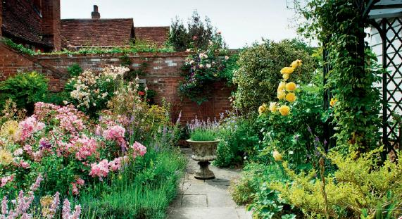 Small garden design ideas and plants english garden for English garden designs