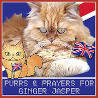 WE LOVE GINGER JASPER