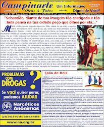 Campinarte Dicas e Fatos / Edição 257