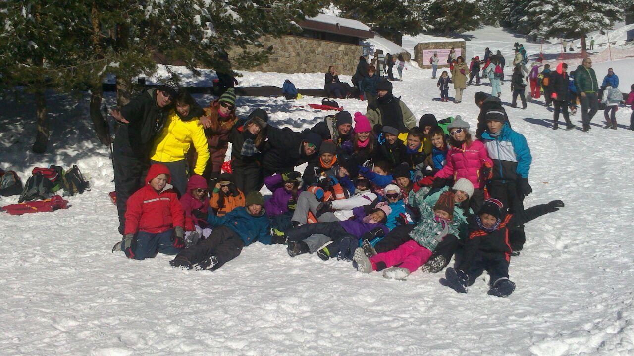 La manada en la nieve