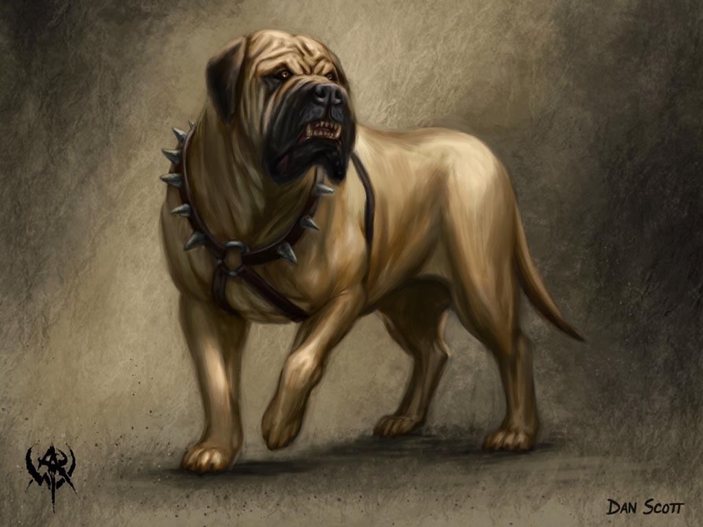 http://4.bp.blogspot.com/-wGROOO77szw/TbxwhsbC9yI/AAAAAAAAB9A/WQgTOzPesT8/s1600/Mastiff.jpg