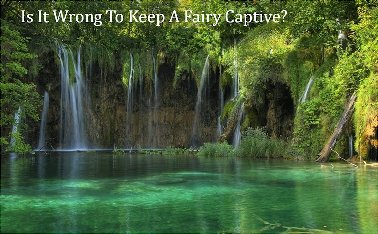 Is It Wrong To Keep A Fairy Captive
