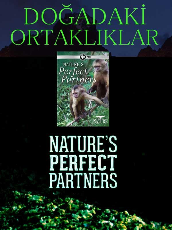 Doğadaki Ortaklıklar