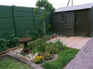 Gardening in Cape Town: my garden after