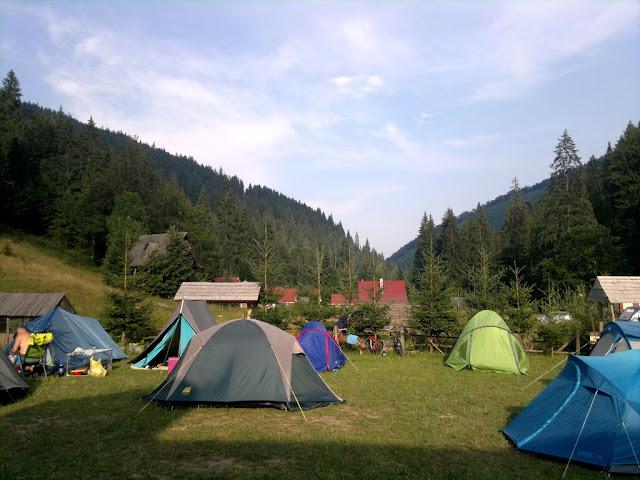 Florin Chindea, maseur la Runsilvania Wild Race 2015. Masaj din Timişoara la Răchiţele. Peisaj cu brazi