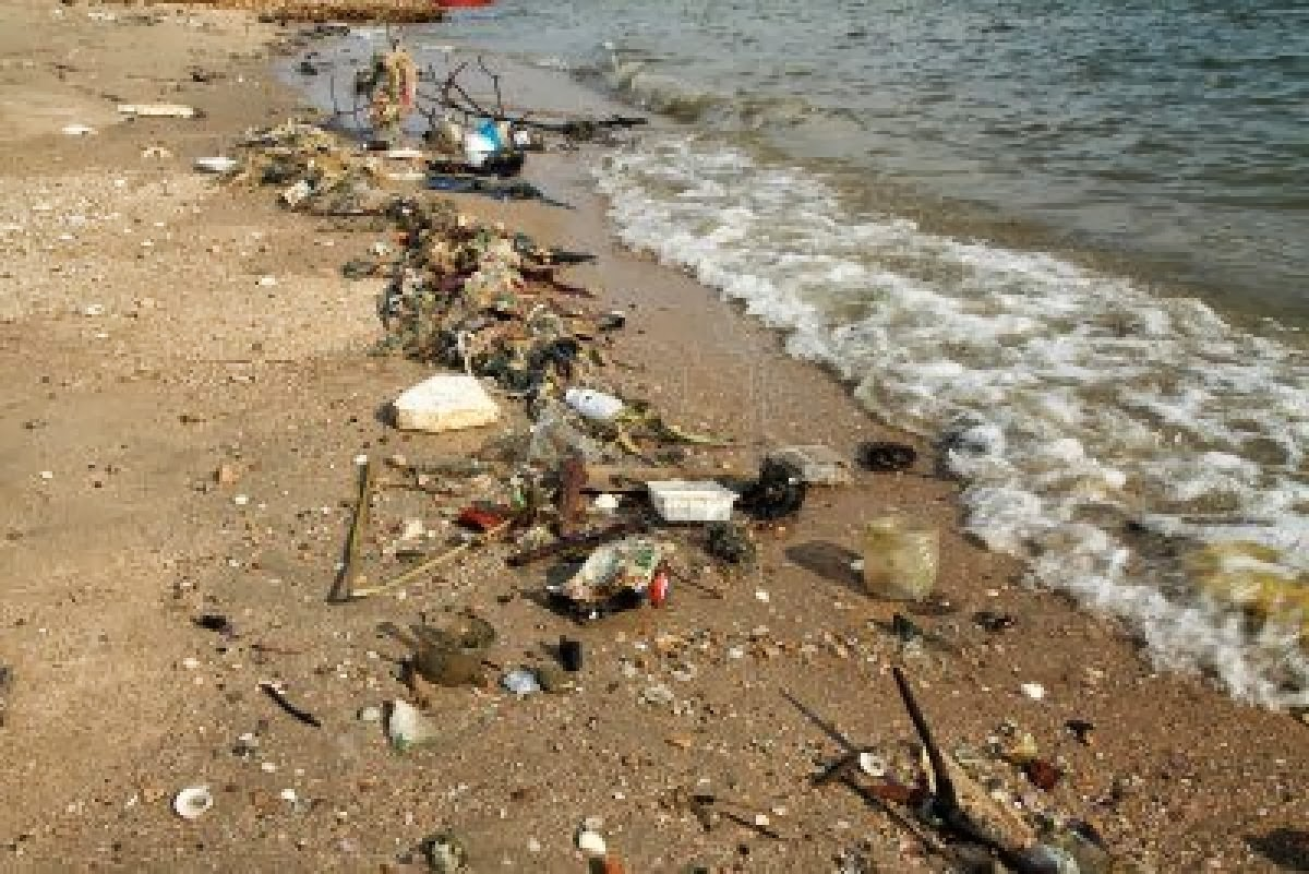 essays on beach pollution The issue we would like to discuss here is about environmental pollution,to make general introduction to enviromental pollution environmental sciences essay.