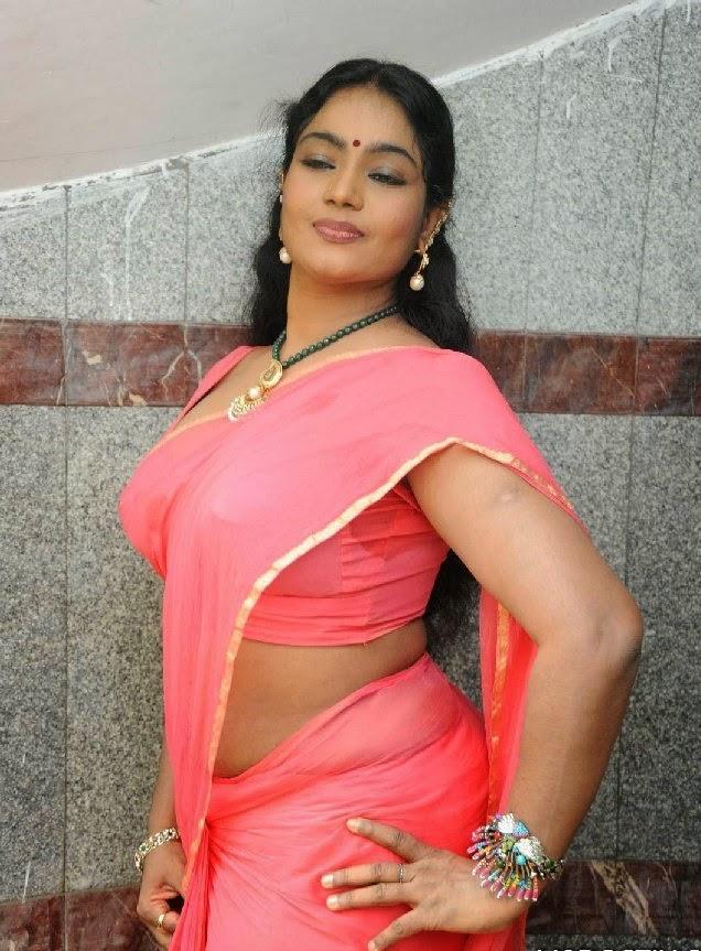 Jayavani Latest Hot Saree Photos free photos and new tamil ...