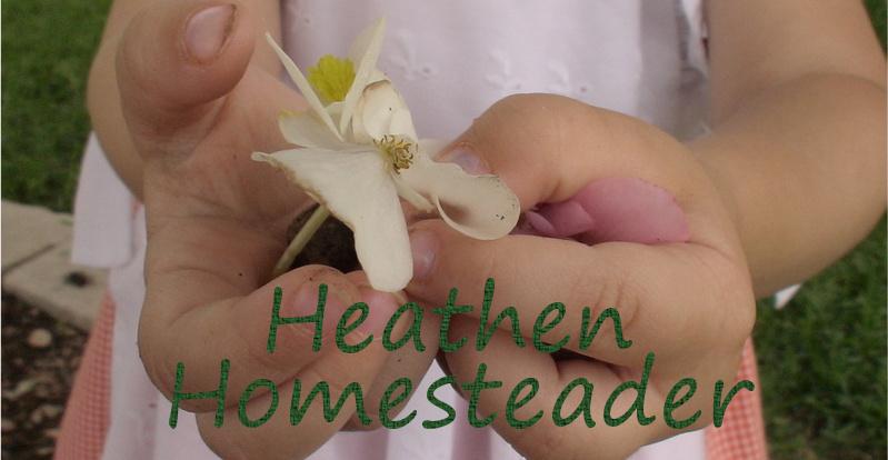 Heathen Homesteader