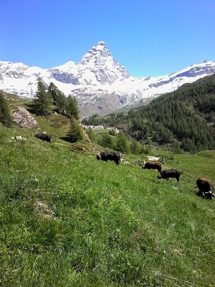 iò Cervino e gli Alpeggi