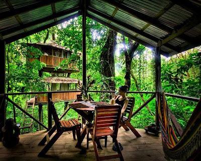 Finca Bellavista Treehouse Costa Rica