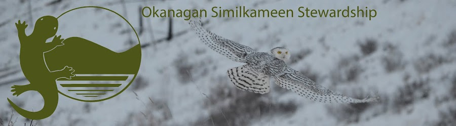 Okanagan Similkameen Stewardship