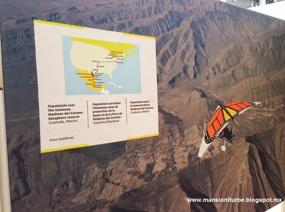 Fotografía de la Exposición el Viaje de la Mariposa Monarca
