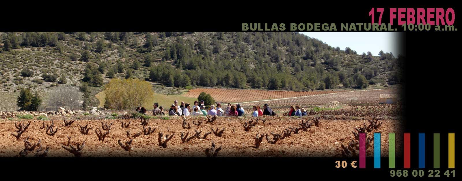 """Ruta """"Bullas Bodega Natural""""."""