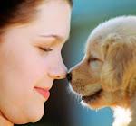Tips Memelihara Binatang Peliharaan