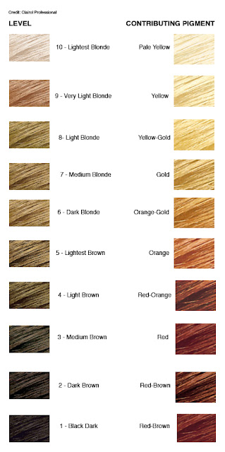 Level 8 Hair Color Chart