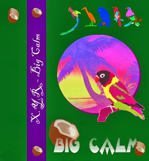 http://singaporeslingtapes.bandcamp.com/album/big-calm