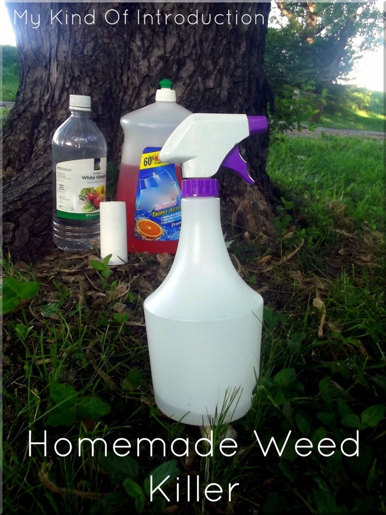 My kind of introduction homemade weed killer recipes