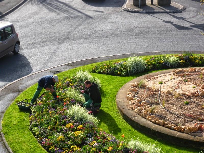 Teix jardiner a dise o e instalaci n de jardines - Disenos de jardineria ...
