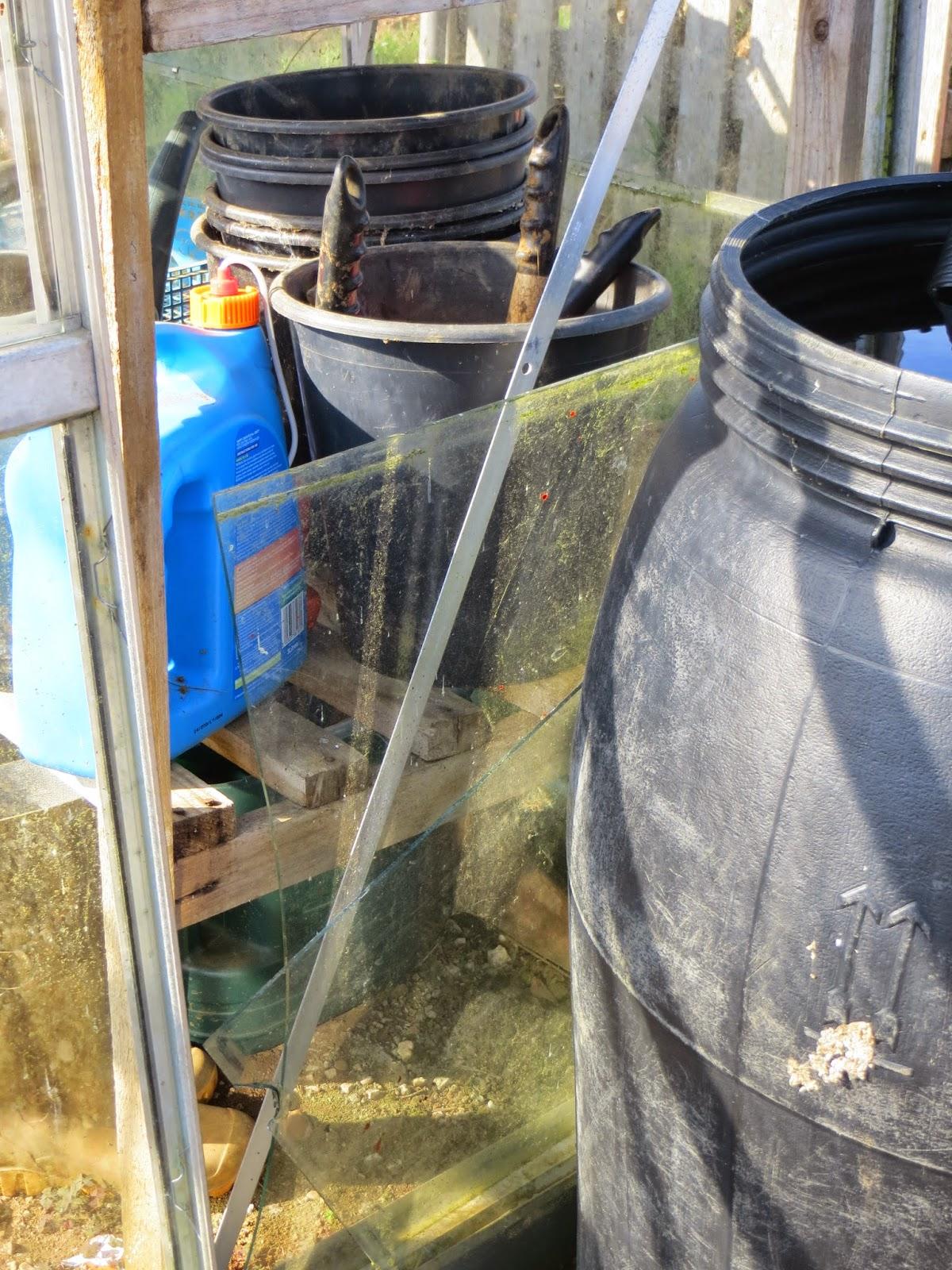 broken glass, greenhouse, allotment