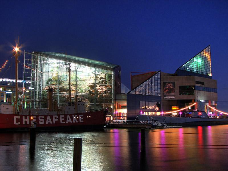 Tourism Baltimore Aquarium