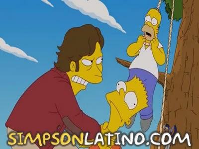 Los Simpson 22x17