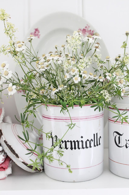 I dag skal jeg dele noe veldig søtt og veldig smått med dere.....bare vent å se :) Men først litt blomster fra grøftekantene og litt franskt og svak rød.