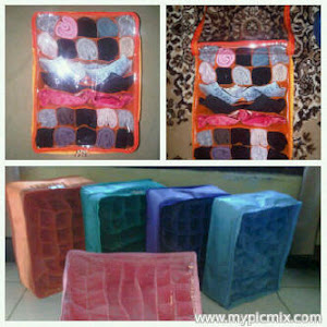 Penty and Bra Organizer
