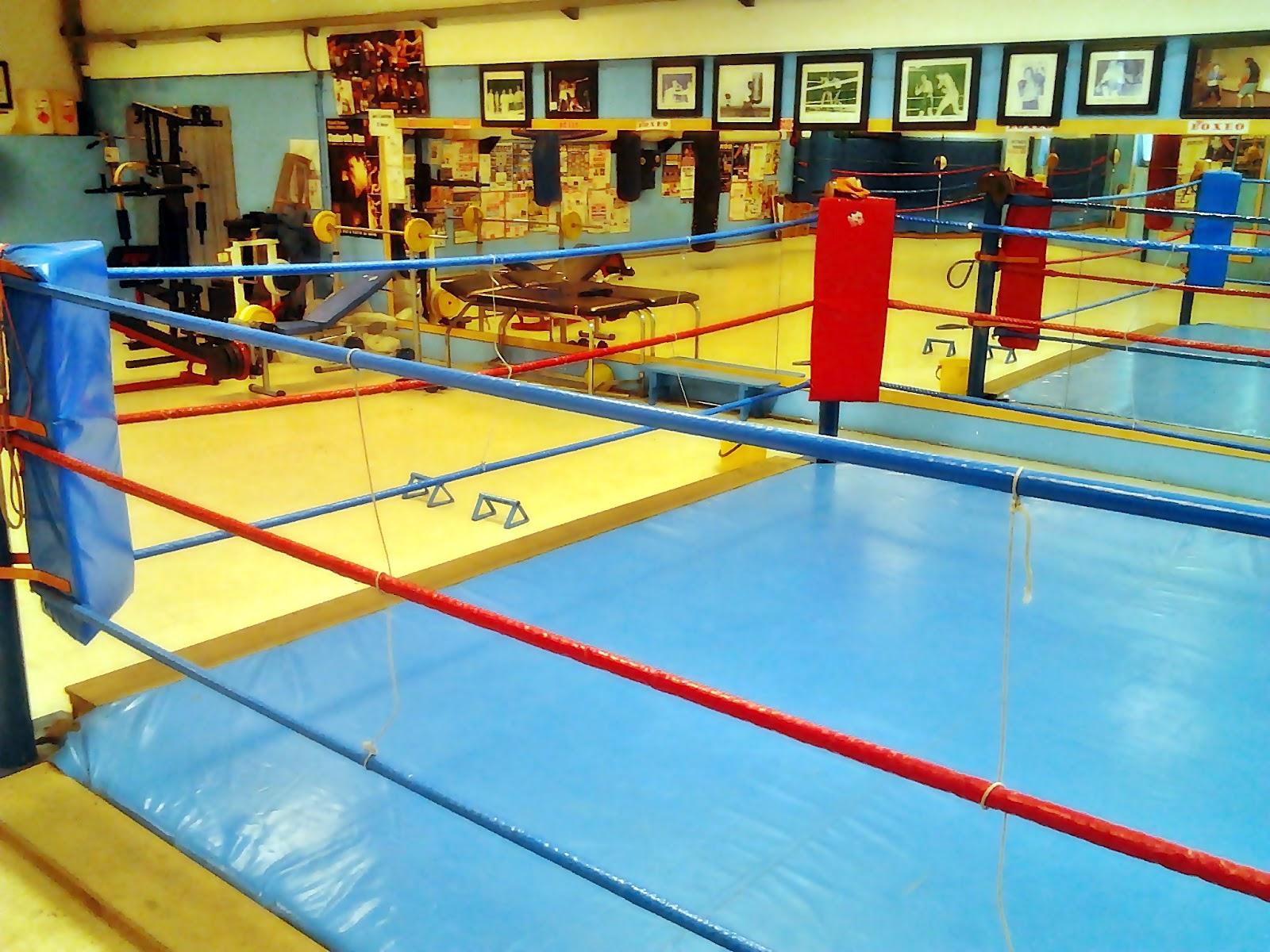 Gimnasio de boxeo en lugo for Gimnasio de boxeo
