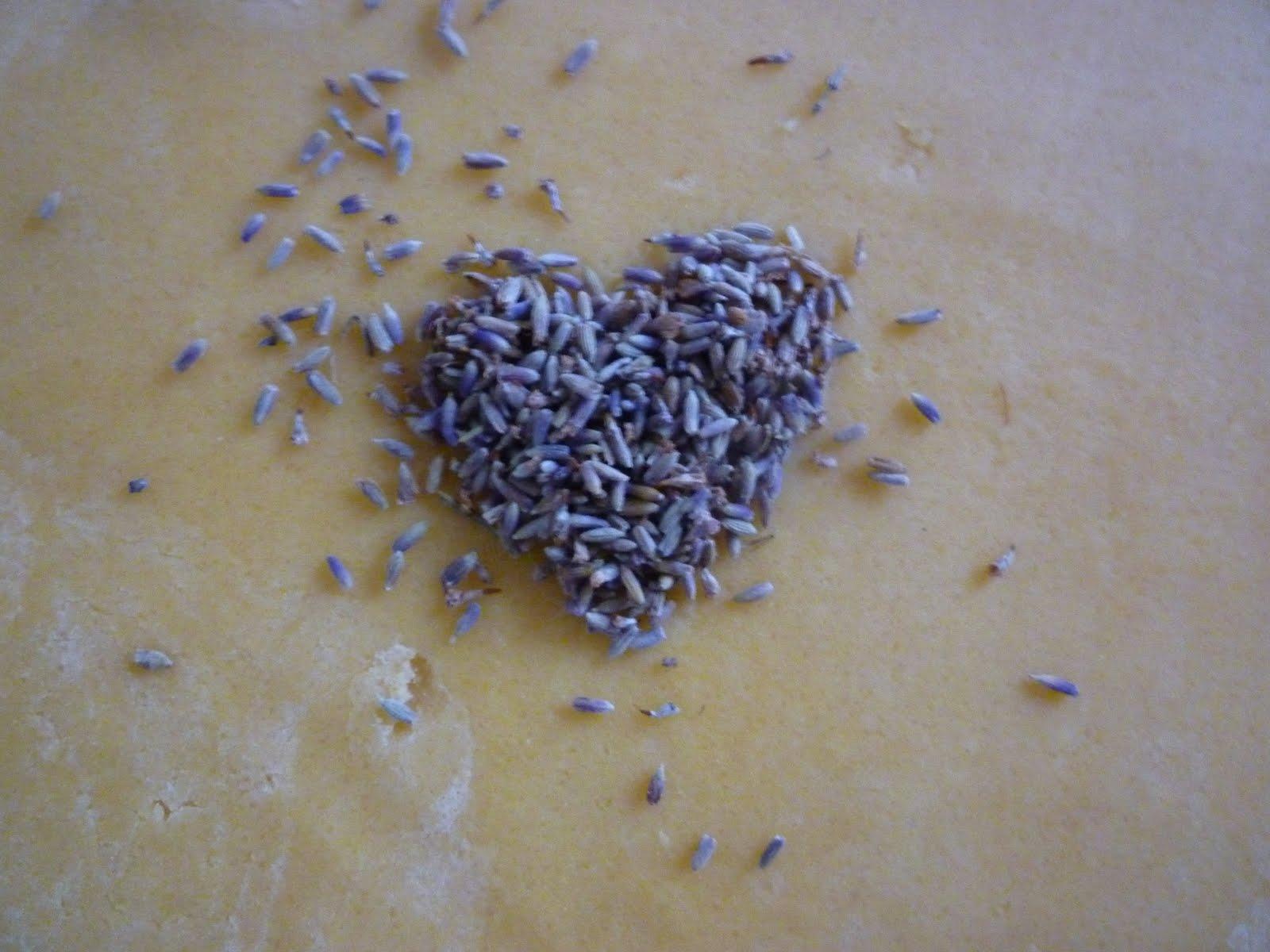 Le bianche margherite biscotti ai fiori di lavanda for Fiori di lavanda