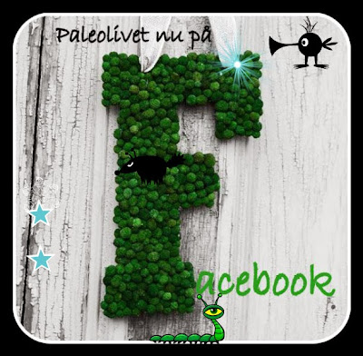 www.facebook.com/paleolivet