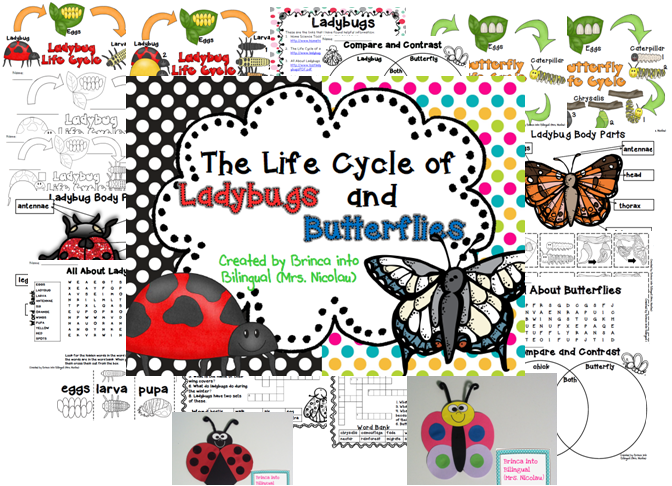 https://www.teacherspayteachers.com/Product/Life-Cycle-Unit-Ladybug-and-Butterfly-Grades-1-3-1167824