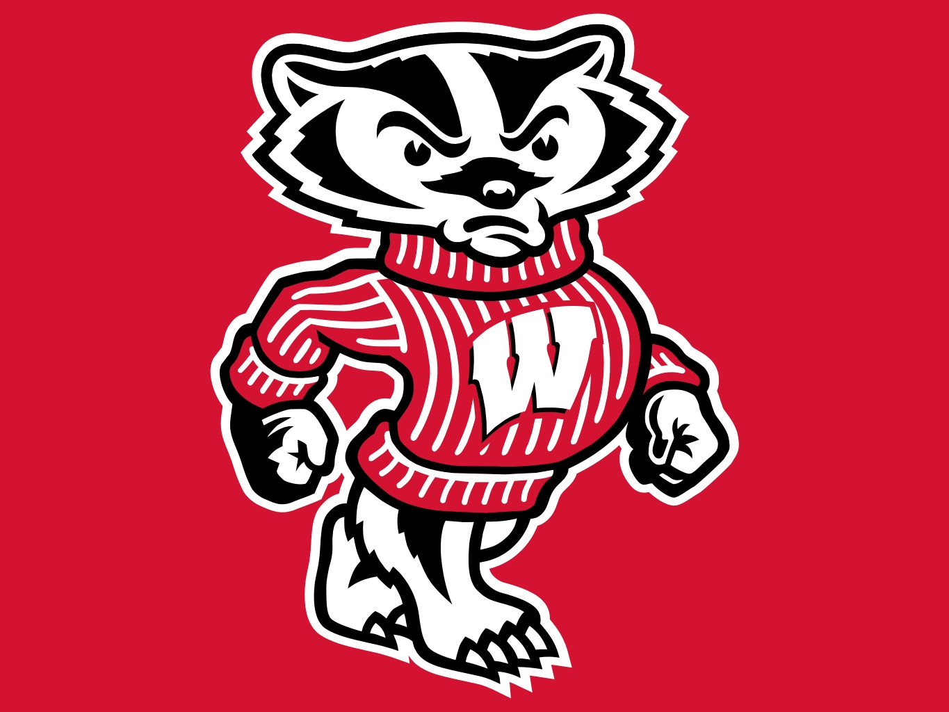 badgers nation