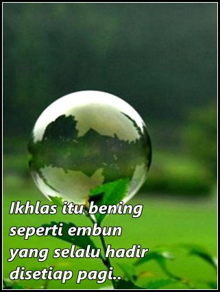 Posted by tri hanifawati Posted on 10:31 PM with No comments