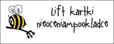 http://diabelskimlyn.blogspot.ie/2015/04/lift-kartkowy.html