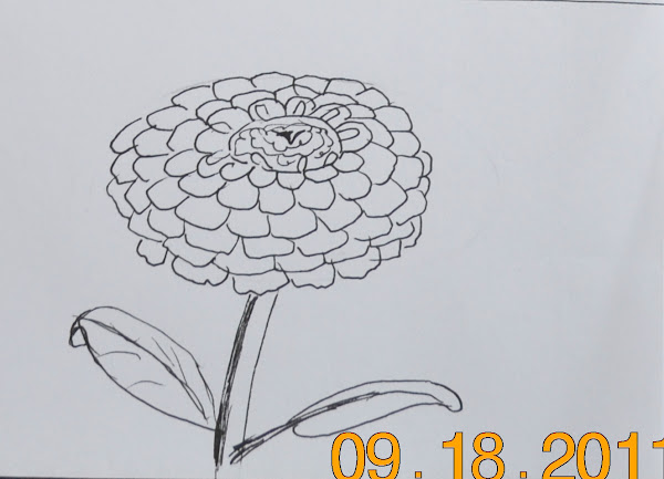 Flowers Art Pencil Drawing Ideas
