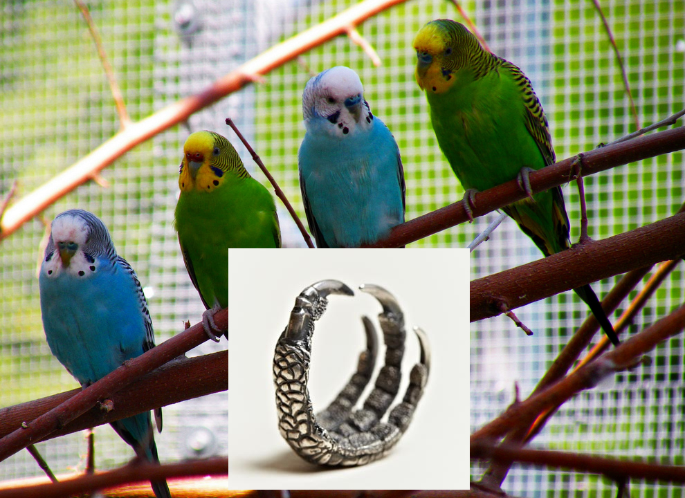 Ann Demeulemeester ring with budgies