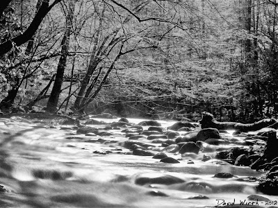 Smokey Mountain National Park, river ND Filter