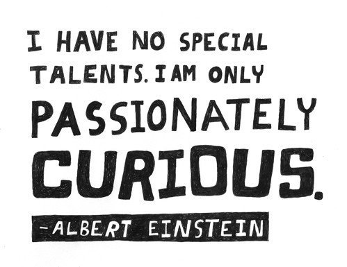 My Name Is Not King...: Passionately Curious: Quote-ables from ...