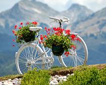 BICICLETAS viejas para decorar jardines terrazas y parques