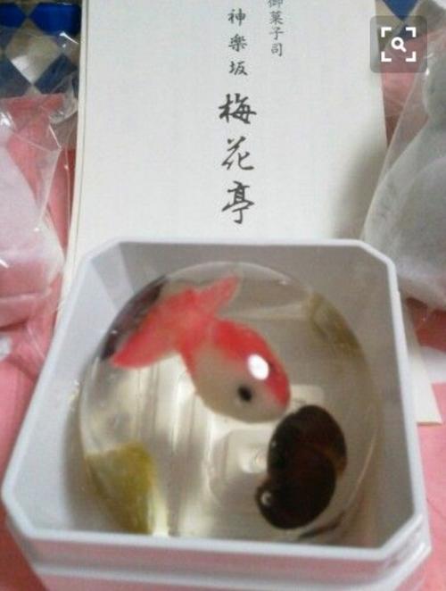 Raindrop Cake Koi