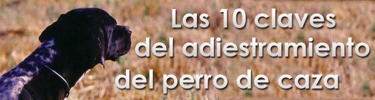 http://www.club-caza.com/articulos/523vicente.asp